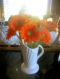 hostess of the humble bungalow: Orange...a pop of colour that elevates the spirit ...