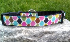 Sweet Roco Dog Collar by WillyWoofs on Etsy, $16.00