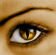 Colorful contact lenses can change your whole look.