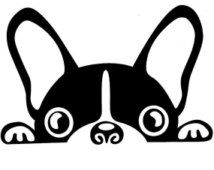 Boston Terriër decal, boston Terriër vinyl sticker, boston Terriër uitgesneden sticker, boston Terriër venster decal autoklever met VL, boston terrier hond