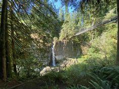 Drift Creek Falls Crosses A Suspension Bridge In Oregon And Leads To A Secret Waterfall Oregon Camping, Oregon Road Trip, Oregon Trail, Places To Travel, Places To Go, Waterfall Hikes, Oregon Washington, Suspension Bridge, Local Attractions