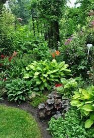 Shade Garden Ideas Starting a Shade Garden Shade Garden Ideas. The shade garden can be exploding with color and texture. No matter how much shade is in your landscape, the right flowers, plants, bushes, and Read Shade Garden Plants, Garden Shrubs, Lawn And Garden, Lush Garden, Garden Beds, Garden Paths, Best Plants For Shade, Garden Nook, Ferns Garden
