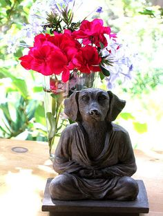 Dog Buddha! Dog Zen is good Zen.  Buddhism for the fuzzy now.