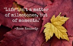 Words of wisdom from Rose Kennedy.