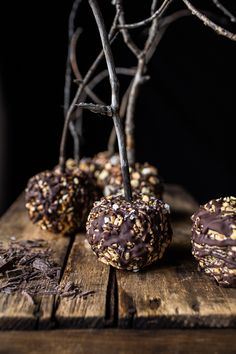 Healthy Caramel Apples…SIX WAYS | halfbakedharvest.com @hbharvest