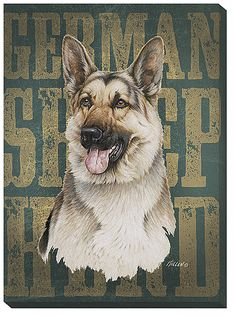Funny German Shepherds Jim Killen German Shepard-Wrapped Canvas - Mark Captures the beauty of the male Cardinal on the birch tree with the chickadees close at Hand Print is a Canvas Wrap with Hanger Ready to go Image Size x French Bulldog Puppies, Dogs And Puppies, French Bulldogs, German Shepherd Puppies, German Shepherds, Cool Dog Houses, Purebred Dogs, Doge, Dog Owners