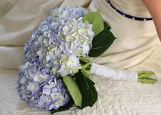 Blue Hydrangea Wedding Bouquest    Photo by Albrightshotz    #blue #wedding #bouquet #hydrangea