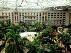 Gaylord Palms - Kissimmee, Florida. went there today for a graduation ceremony and it is beautiful! wouldnt have to worry about weather if we used the atrium!