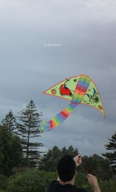 Let There Be Lights And Kites Again >> 116 Best People Flying Kites Images Kite Designs Box Kite Dragon