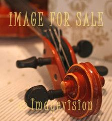 for sale violin neck and tuning-peg