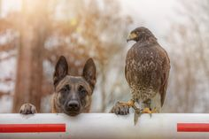 Full trust by Tanja Brandt on 500px