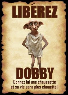Read dobby from the story image/meme Harry Potter 2 by JadeKraak (Jadisse) with 507 reads. Dobby Harry Potter, Harry Potter Fiesta, Images Harry Potter, Harry Potter Thema, Cumpleaños Harry Potter, Harry Potter Birthday, Lily Potter, Image Meme, Harry Potter Bricolage