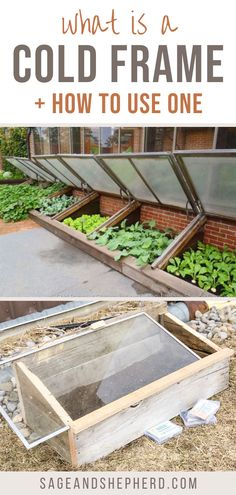 Learn everything you need to know about a cold frame! A cold frame allows you to plant earlier and grow cold hardy crops like lettuce and roots! Starting A Vegetable Garden, Vegetable Garden For Beginners, Gardening For Beginners, Gardening Tips, Cold Frame, Best Seasons, Raised Garden Beds, Garden Planning, Lettuce