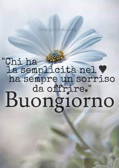 Good morning sister have a nice day Good Morning Sister, Good Morning Quotes For Him, Good Morning Messages, Good Morning Good Night, Good Day, Italian Memes, Desiderata, Sweetest Day, Do It Right