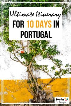Planning a trip to Portugal? We have the most epic 10 day Portugal itinerary for you. Explore the bigger cities of Lisbon and Porto, charming small towns of Coimbra and Leiria, tour a medieval city, eat well, spot Azulejos, tour nature, and do much more. Come, spend 10 days in Portugal. #portugaltravelitinerary #portugaltraveltips #portugalitinerary10days #portugaldestinations #septembertravel #lisbon #sintra #porto #douro #portugalphotography #obidos #travelinspiration #traveldestinations