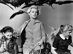 Die Vögel (1963) on IMDb: Movies, TV, Celebs, and more...