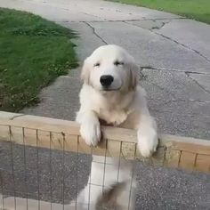 So happy to see you!