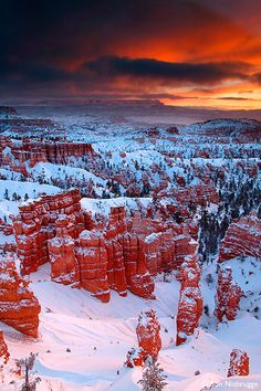 Stock photos of Sunset Point, Winter, Bryce National Park, Utah. Photos by Ron Niebrugge. All Nature, Amazing Nature, Beautiful World, Beautiful Places, Bryce National Park, Sunset Point, Bryce Canyon, Winter Scenes, Beautiful Landscapes