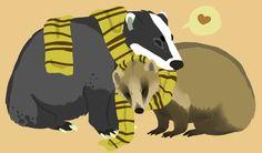 Badger Cuddles