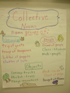 2nd Grade Pig Pen: Collective Nouns and a Few Pictures