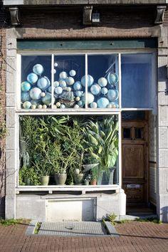 Die Pflanzen der Anderen - Photo Kees Muizelaar
