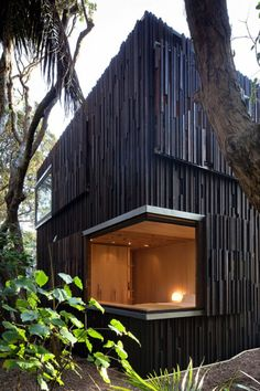 A House Under The Pohutukawa Trees…