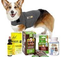 Pet Emergency Preparedness Tips   Kriser's