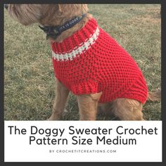 This crochet dog sweater pattern comes in 6 different sizes. Pattern uses basic crochet stitches. Crochet Dog Sweater Free Pattern, Crochet Dog Patterns, Dog Sweater Pattern, Dog Crochet, Free Crochet, Sweater Patterns, Crochet Ideas, Washcloth Crochet, Collar Pattern