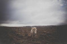 tapað og fundið - part 2