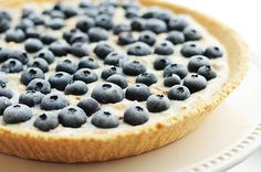 Frozen Blueberry Coconut Yogurt Pie