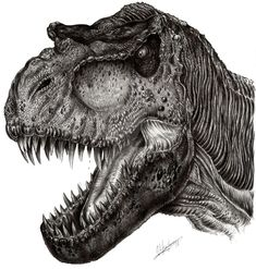 Jurassic Park 1993, Jurassic Park World, Dinosaur Drawing, Dinosaur Art, Alien Creatures, Prehistoric Creatures, T Rex Tattoo, Hp Tattoo, Graphic Art Prints
