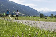 Auf den Rollerskates durchs Salzburger Land Sports Training, Boutique, Mountains, Nature, Travel, Naturaleza, Viajes, Destinations, Traveling