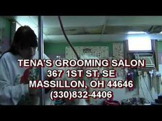 WWW.OURTOWNCONNECTION.COM LIKE US ON FACEBOOK https://www.facebook.com/OurTownConnection?ref=tn_tnmn  Tenas Grooming Salon.  367 1st St SE, Massillon, OH 44646 (330) 832-4406