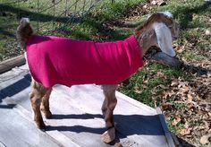 How to Make No-Sew Kid Coats - Oak Hill Homestead