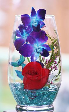 Red Rose, Blue Orchids Under Glass by bigbrowneyez, via Flickr