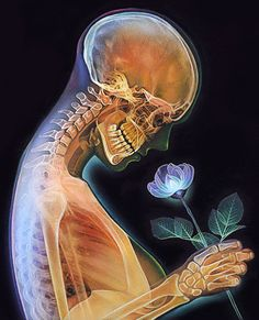 """See Through Me"" - Morgan Davidson, color pencil {female human anatomy xray skeleton profile with flower drawing} morgandavidsonart.com"