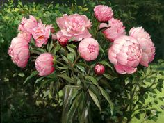 Image from http://www.rehs.com/catalogimages/allan_banks_ab1007_peonies.jpg.