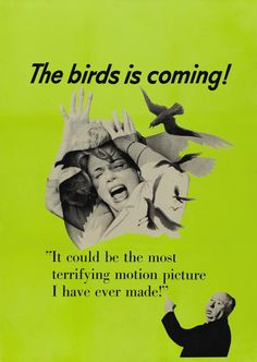 :: The birds is coming ::