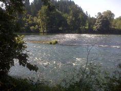 Willamette River, Eugene Oregon