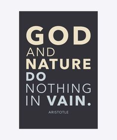 God and nature do nothing in vain - Aristotle. Dimension: 30x20cm. Material: 100% Forex.