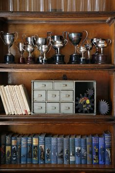A collection of silver loving cups and trophies from the 1920s are set atop a vintage wood tackle box with foundry patterns. Below, antique British Boy's adventure stories from the time of the First War are wrought with guidance in fortitude, moral structure and becoming the quintessential Englishman. Everything is displayed within a Globe-Wernicke quarter-sawn Oak Barrister Bookcase from the 1920s.