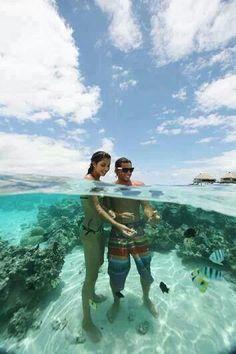 Crystal clear water, Moorea, French Polynesia. 私も昔ハワイの海で、海中に潜って魚に餌をやったことを思い出しました。