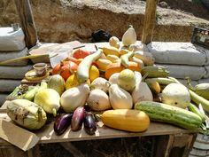 Garlic, Vegetables, Food, Veggie Food, Vegetable Recipes, Meals, Veggies