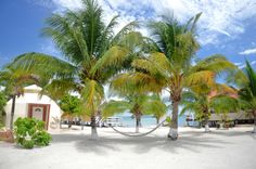 Paradise is South Water Caye