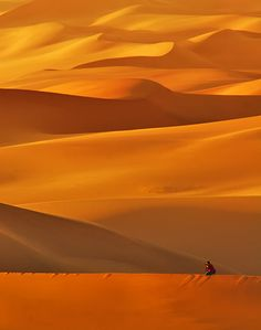 """On the Dunes Edge"" by Abdulmajeed."