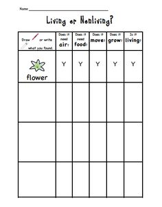 Sarah's First Grade Snippets: Living and Nonliving - Food: Veggie tables 1st Grade Science, Primary Science, Kindergarten Science, Elementary Science, Science Classroom, Teaching Science, Classroom Activities, Classroom Ideas, First Grade Science Projects