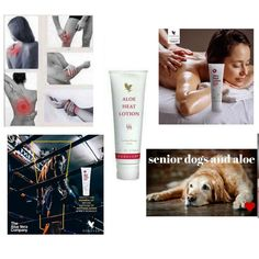 SHOP – Aloe.NutritionsStore Forever Bright Toothgel, Aloe Heat Lotion, Forever Freedom, Forever Living Business, Forever Living Aloe Vera, Ovarian Cyst, Medical Problems, Forever Living Products, Aloe Vera Gel