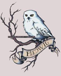 Fan Art Harry Potter - Hedwige (et Harry) - Wattpad