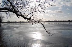 Damhus lake 2
