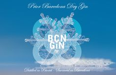 BCN GIN Winter Time 2014